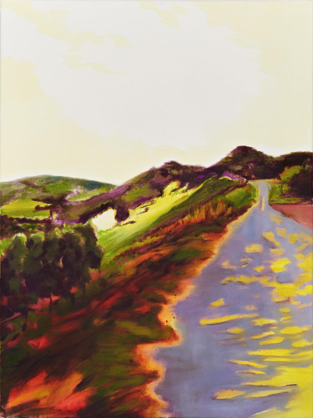 ein fleckig gelb lila Weg führt zu einem Berghügel