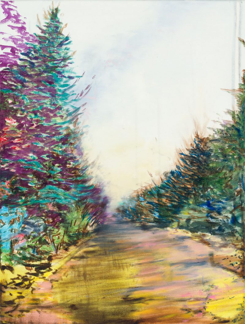ein Weg ins Nichts mit fahlem Himmel, links und rechts bunte Büsche und Bäume